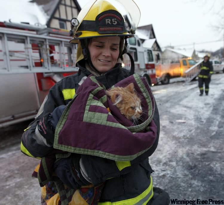 111229- Fire Cat.jpg