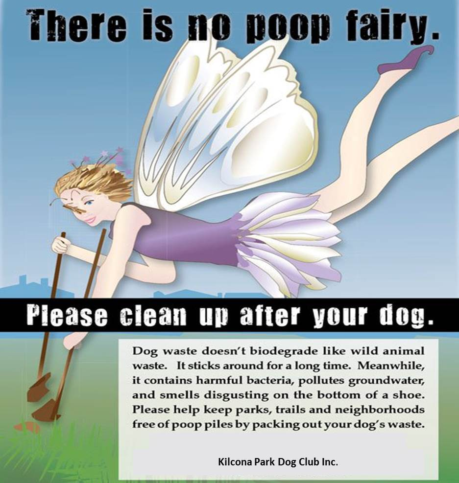 poop fairy 5