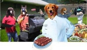 Dog Crew