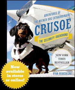 Crusoe1