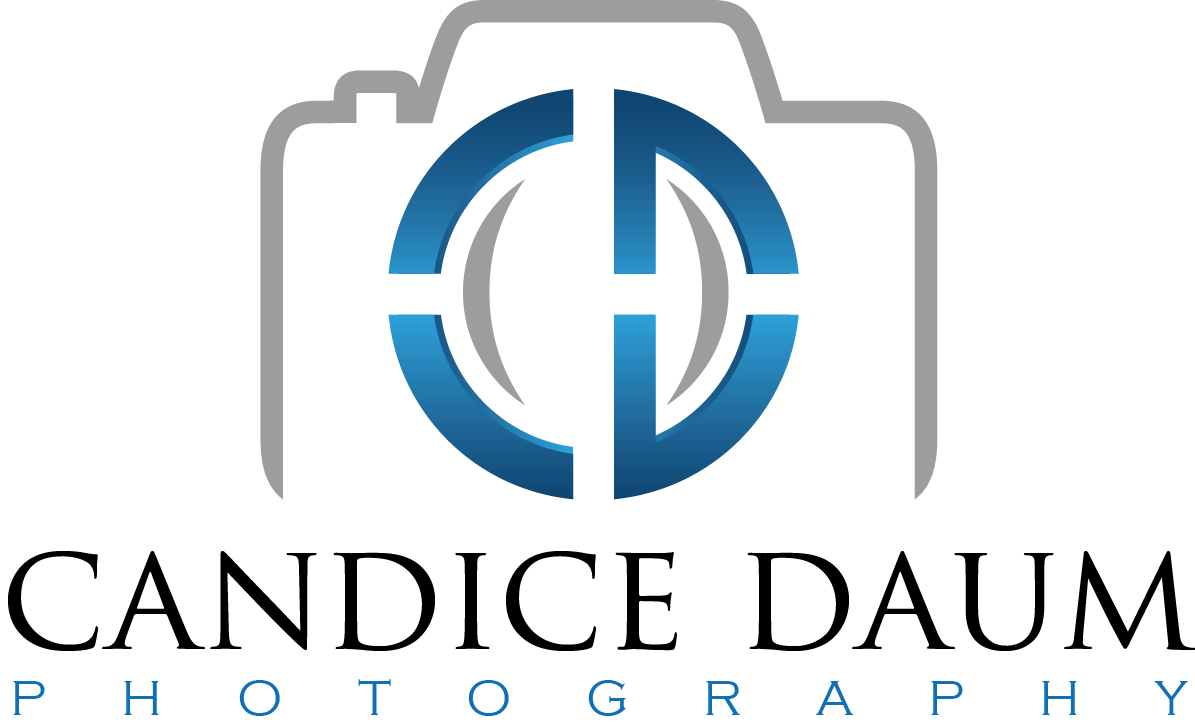 CD logoon transparentBIGNAME